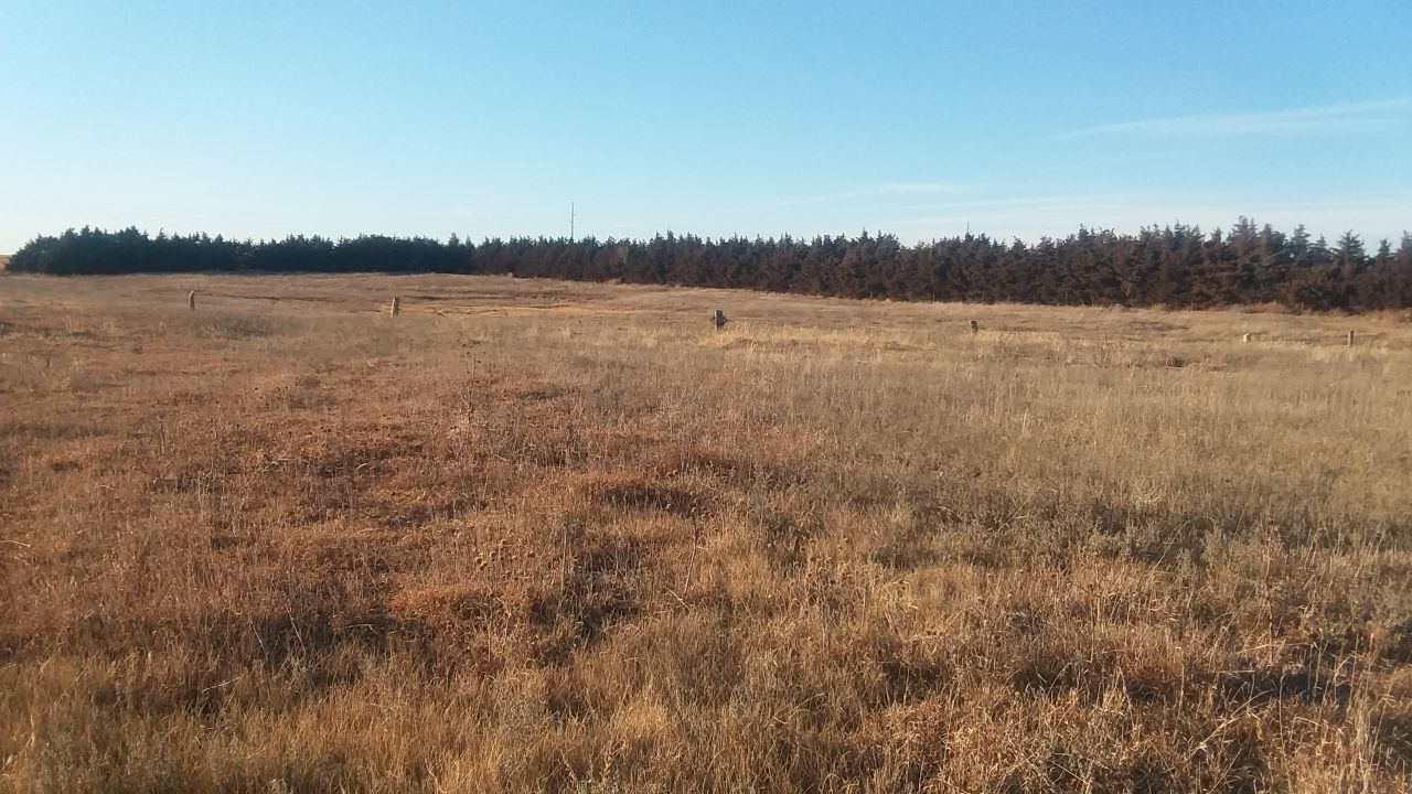 Item 1 in 320 Acres More or Less Rush County, Kansas gallery