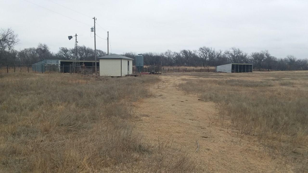 Item 8 in 240 +/- Acres Rush County, Kansas gallery