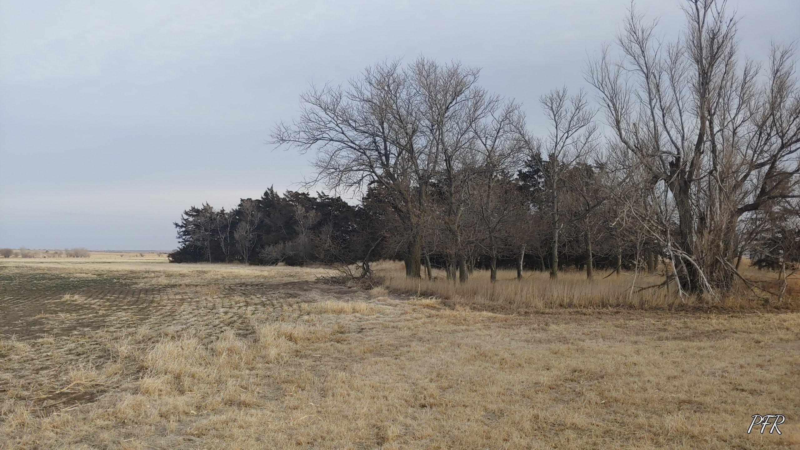 Item 4 in 150 +/- Acres Russell County, Kansas gallery