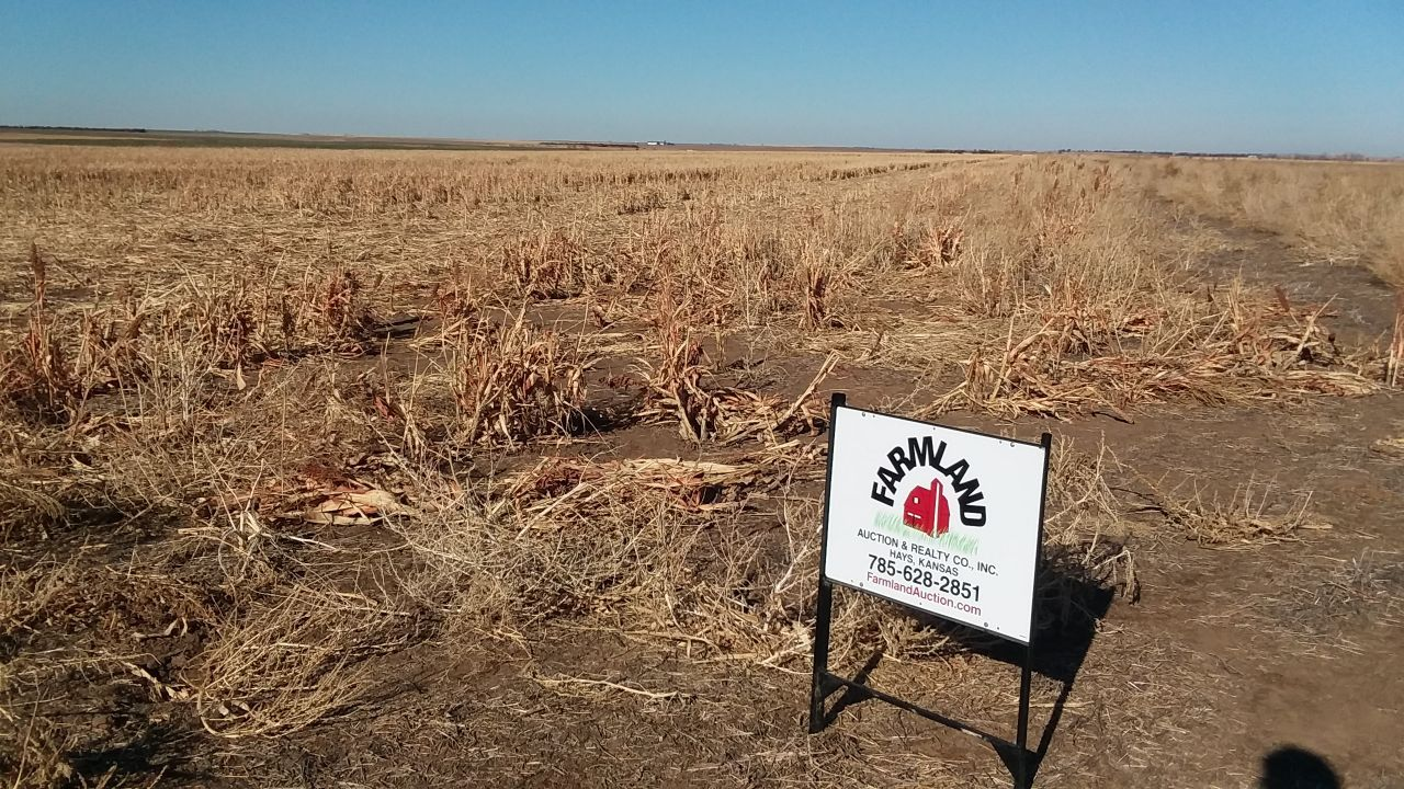 Item 3 in 320 Acres More or Less Rush County, Kansas gallery