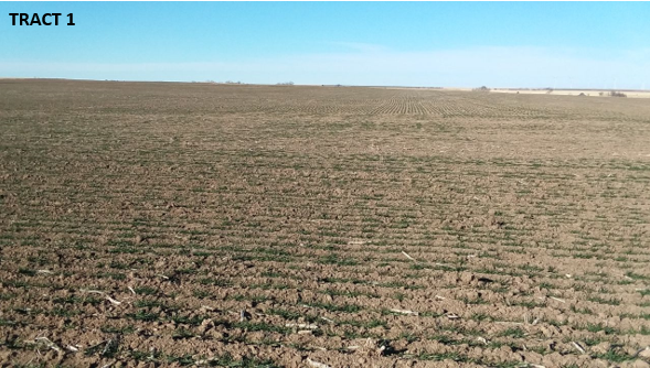Item 4 in 480 Acres More or Less Ness County, Kansas gallery