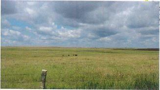 Item 1 in 640 +/- Acres, Ness County, Kansas gallery