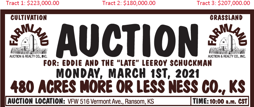 Auction flyer for 480 Acres More or Less Ness County, Kansas
