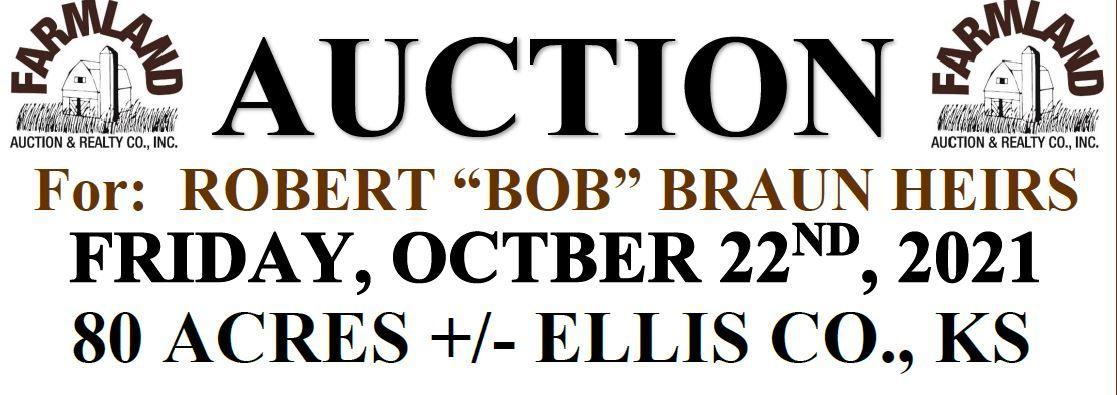 Auction flyer for 80 +/- Acres, Ellis County, Kansas